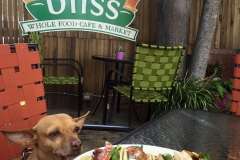Bliss San Loius Obispo Tacos